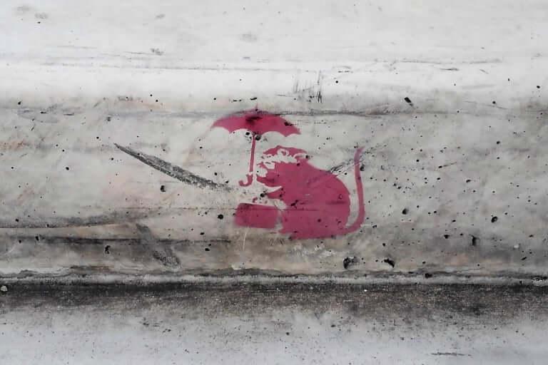 【西宮市】何かと話題のバンクシーアート。なんと、西宮市内でも発見しました!