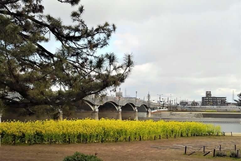 武庫大橋付近