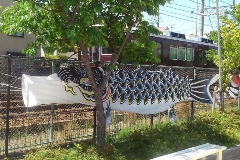 【西宮市】阪急今津線の車窓から、大きな鯉のぼりを発見!こんなに間近で見られるのは、他にはないかも!?