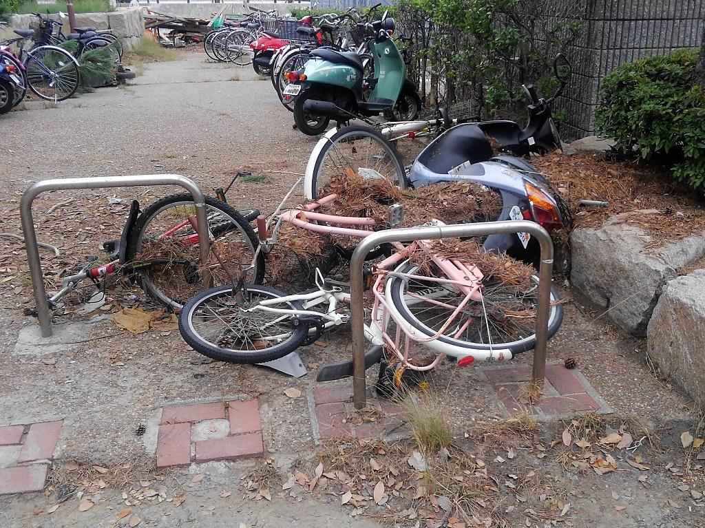 高潮被害にあった自転車