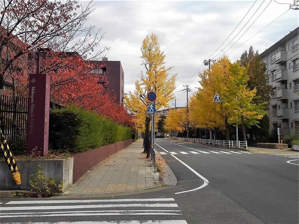 武庫川女子大薬学部前