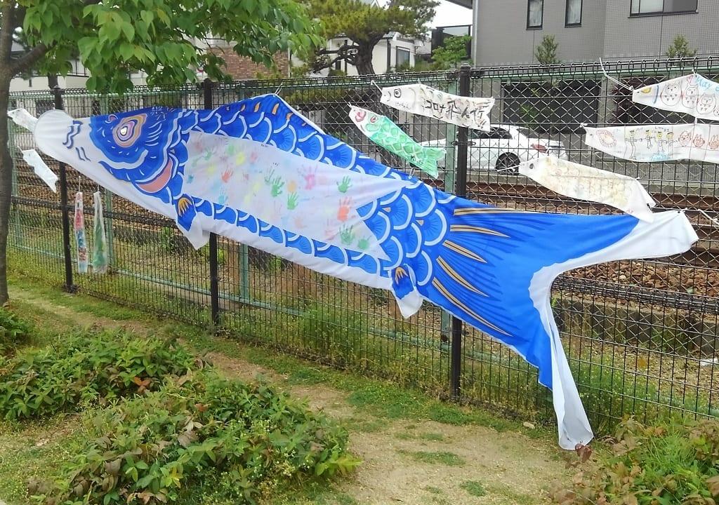 鯉のぼり2020①